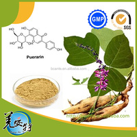 GMP Natural Kudzu Root Extract Powder Puerarin or Isoflavone 30%