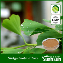 100% natural high quality ginkgo biloba leaf extract