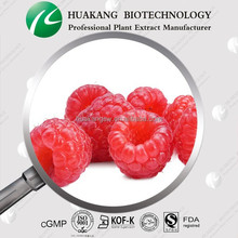 100% Natural Raspberry Extract 10:1/Raspberry Extracts/Raspberry Powder