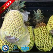 China Supply/ISO/Foam Fruit packing net wholesale