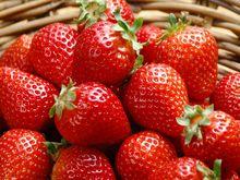 Very good fresh strawberry