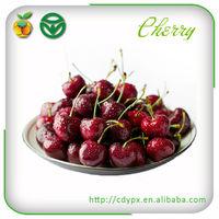 Bulk Fresh Fruit Cherry /Fresh Agro Products Export