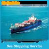 Shenzhen/Guangzhou/Qingdao/Shanghai Sea Shipping Company To Penang Malaysia------roger (skype:colsales24)