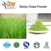 Wholesale Green Barley Grass powder manufacturers