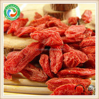 Top grade best sell organic dried goji berry for sale