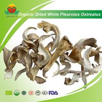 Manufacturer Supply EU/NOP Standard Organic White Dried Pleurotus Ostreatus