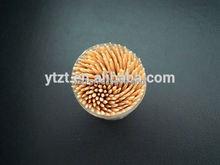 customized dental Dental plastic toothpicks in T shape for pp bottle pack customized packing