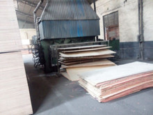 Natural wood plywood, commercial plywood board