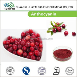 Natural Whitening Cream Additive Bilberry Extract 25% Anthocyanins