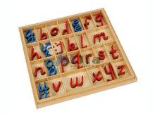 montessori equipment -Small D Nealian Moveable Alphabet montessori teaching materials toy