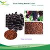 grape seed P.E./Vitis vinifera L./grapestone extract