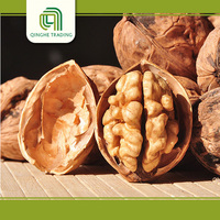 wholesale walnuts buyer for sale