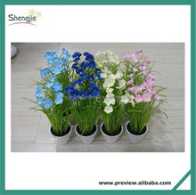 Artificial succulent plants tropical plants