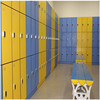 Rich color assembled electronic personal storage locker