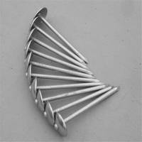 Umbrella Head Roofing Nail/ Galvanized roofing nail/ Roofing Nail China Factory
