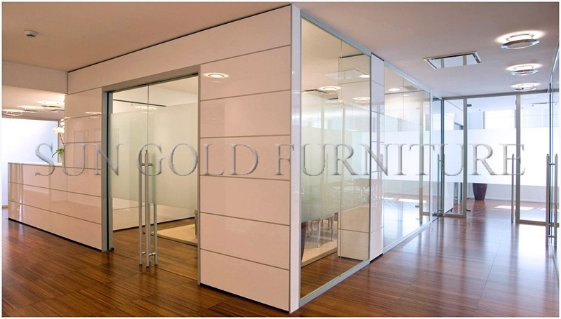 Moden ikea style clear glass removable office partition for Partition wall ikea