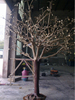 Zhejiang shengfa Metal tree sculpture garden sculpture for sale