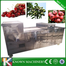 All stainless steel 800kg/h jujube pit extractor,jujube pit remove machine,jujube pitting machine
