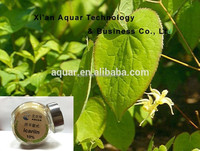 Natural Herbal medcine extract/Manufacturer supply epimedium extract horny goat weed 10% 20% free sample
