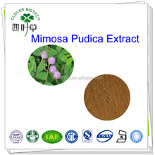 10:1 mimoside 100% natural Sensitive plant Extract