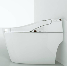 Computerized one piece toilet bowl hand held bidet