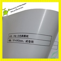 100g white pe coated one side paper for food bag making