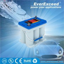 Hot sell High quality 12v AGM Pure spiral electric vehicle battery