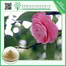 2015 best quality Camellia oleifera seed extract tea saponin 85% 95% FREE sample