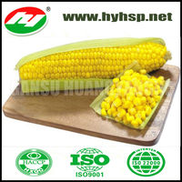 Yellow Sweet Corn in vacuum bag