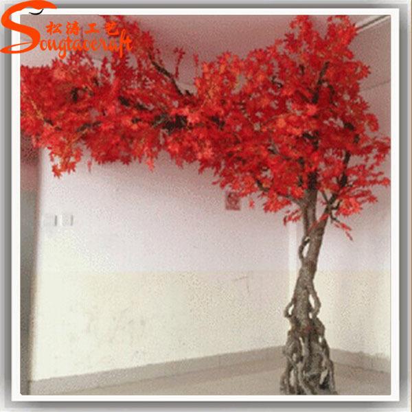 2015 r aliste japonais rable bonsa bonsa arbre prix l - Bonsai arbre prix ...