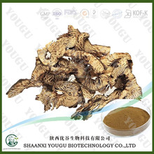 High quality natural plant extract Black Cohosh Extract 2.5% Triterpene glycosides
