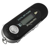 New 2GB USB Flash Drive LCD Screen Mini MP3 Music Player With FM Radio Car Gift pen drive minions darth vader