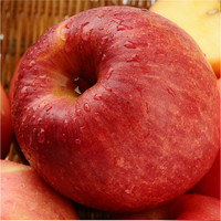 chinese bulk fuji apple
