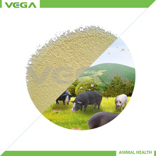animal feed China supplier soya beans meal for sale