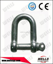 Factory supply marine hardware european type screw pin d shackle