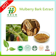 Pure Mulberry Bark Extract 10:1 20:1, Flavone