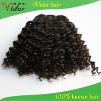 Supper Quality 100% Human Hair Short Hair Brazilian Curly Weave