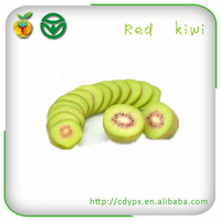 Fresh Fruit Importers Fresh Kiwi Fruit Export