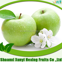 Competitive price for fresh green gala delicious apple