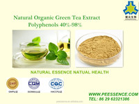 High quanlity best price Green Tea Extract 98% Catachin 80% EGCG50% tea polyphenols for capsule