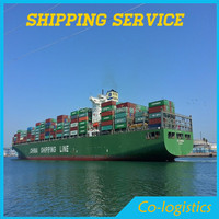 special and professional shipping freight to make for u from china to Algiers ( Algeria)---MIA