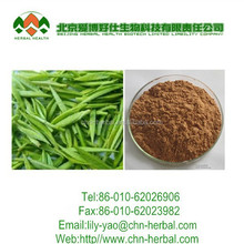 Natural Green Tea Extract /Tea Polyphenol, Catechin