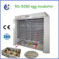 Newest design Full Automatic chicken egg incubator , incubator and hatcher for egg , incubator RD-5280