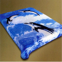 New Design Super Soft 100% Polyester Raschel Blanket