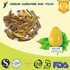 Best quality of Amur cork tree bark extract powder HPLC 98% Berberine hydrochloride