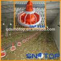 automático de aves de corral equipos para la granja de aves de corral