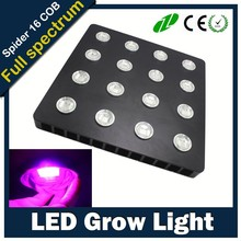 First-class quality grow led cob 100w, 1000 watt king led grow light , 1200w led grow lights
