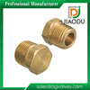 Popular Top Sell Brass Plug