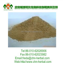 1kg Ginseng Root Extract 80% Ginsenosides (Latin name: Panax Ginseng C.A.Mey) 20%,25%,80%7%