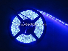 Rohs cuttable led strip light amber flexible 3528 waterproof WW/NW/CW/R/G/B/RGB 60PCS/M 5M/ROLL DC12V/24V 24W ESD bag packing